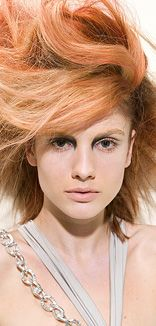 Joico Copper & Blonde