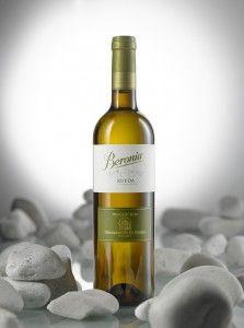 González Byass acaba de lanzar Beronia Rueda, un vino blanco 100% verdejo, aromático, fresco y sabroso. Un vino bueno y barato.