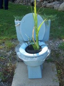 Toilet planter! Creative and fun (depending on your sense of humor :) ) idea for recycling a toilet.