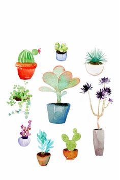 Cacti style