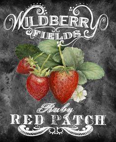Wildberry Fields Fine-Art Print by Art Licensing Studio at UrbanLoftArt.com