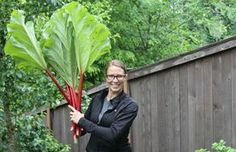 How to Grow Nigella Sativa | eHow
