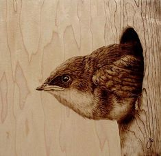 Inspired by nature and wildlife, artist Julie Bender etches illustrations of various animals by burning her images into wood. By employing the traditional art of pyrography, which dates back to ancient Egypt, Bender essentially paints with fire. The art i Wood Burning Crafts, Wood Burning Patterns, Wood Burning Art, Wood Crafts, Pyrography Designs, Pyrography Patterns, Pyrography Ideas, Bird Art, Painting On Wood
