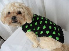 "Polka dot dog sweater knitting pattern PDF. The instructions are in a chart and this sweater fits a dog with a 16"" chest."