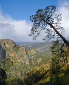 Pinnacles National Monument - Great outdoor recreation in Central California Central California, California Travel, Us National Parks, Beautiful World, Beautiful Places, Outdoor Recreation, State Parks, Places To See, Adventure