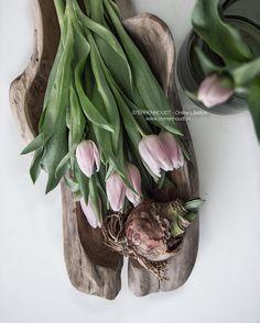 ... a little bit of spring  . . . De robuust houten schaal van ons eigen label @woondt vind je in onze webshop www.sterrenhoudt.nl