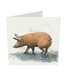 by Alex Egan  £2.25  www.wildcardcompany.com Funny Birthday Cards, Birthday Greeting Cards, Pig Drawing, Funny Cards, Animal Paintings, Moose Art, Wildlife, Watercolor, Pigs