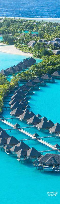 St. Regis...Bora Bora   LOLO❤︎