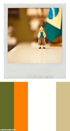 Tintin No Brasil Color Scheme