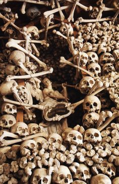 from 'The Empire of Death' - Church of Skulls, Poland