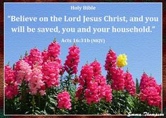 .ACTS  16:31