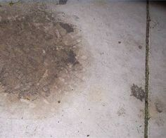 How To Remove Stains From Concrete Floors