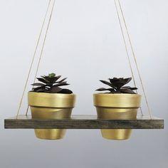 Hanging Planter Succulent Pot Indoor Terracotta Air