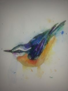 nuthatch watercolor 2014 - sold
