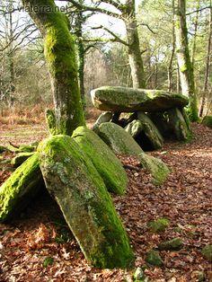 Dolmen de la Loge aux Loups, Bretagne