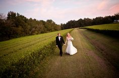 Kelley and Jeff get married at the Charleston Tea Garden
