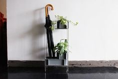 營造出世界觀的小型家具採樣家具容器Sunbox | D和部門 Life Design, Interior, Green, Home Decor, Decoration Home, Indoor, Room Decor, Interiors, Home Interior Design