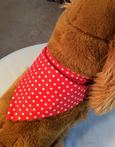 Dog / Puppy Bandana  Personalized  Reversible  Red with