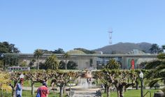 California Academy of Sciences in Golden Gate Park (across from the De Young)