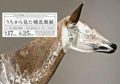 Composition of Mammals / Wataru Yoshida