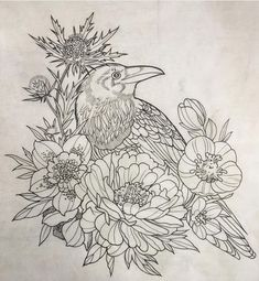 tattoos tattooed draw drawing ink inked neo traditional neotraditional traditional bird crow flowers composition