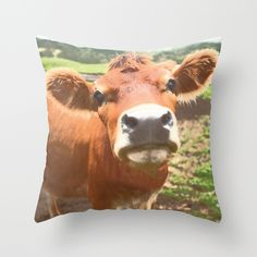 Cow throws, holy cow! @Paisley Prints Online society6 page http://society6.com/product/jersey-cow-556_pillow#25=193&18=126