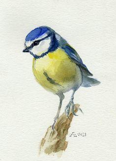 Bird painting, watercolor bird, Blue Tit Bird Original watercolor painting, Cyanistes caeruleus, Chickadee family: