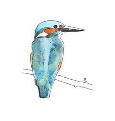 Animal Drawings by Tom Henderson, via Behance