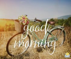 Are you searching for inspiration for good morning sunshine?Check out the post right here for very best good morning sunshine ideas. These hilarious quotes will bring you joy. Good Morning People, Good Morning Thursday, Good Morning Cards, Good Morning Funny, Good Morning Greetings, Good Morning Good Night, Good Morning Wishes, Morning Messages, Gd Morning