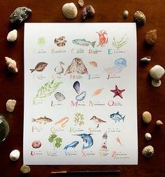 Ocean Watercolor Alphabet   Etsy Coastal Nursery, Nursery Decor, Watercolor Ocean, Alphabet Print, Oregon Coast, New Words, Playroom, Hand Painted, Handmade Gifts