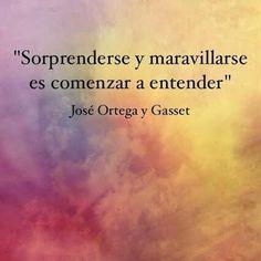 José Ortega y Gasset señala, con esta declaración, la puerta al entender y también a encuentros saludables, validantes y enriquecedores. Conectarse con cualquier objeto de conocimiento desde lo que...