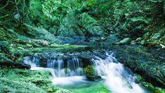 Σαμοθράκη: Το νησί με την ωραιότερη ενέργεια στο Αιγαίο-exfacto.gr #samothraki #σαμοθρακη Waterfall, Outdoor, Outdoors, Waterfalls, Outdoor Games, The Great Outdoors