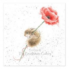 Poppy by Hannah Dale SIGNED PRINT