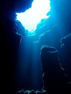 Caves in coral reefs are the largest and least well known part of the reef. (Credit: iStockphoto/Charles Humphries)