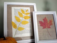 Frame pressed leaves.