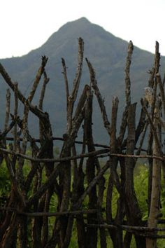 primitive fence