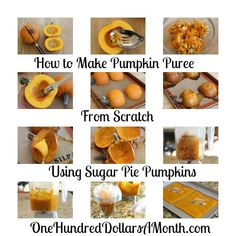 This is so much fun to do, unless you are 7+ months preggers and trying to cut the pumpkin but your baby bump gets in the way....must be why Nick likes pumpkin pie so much!  How to Cook a Pumpkin – Pumpkin Pie Puree Recipe