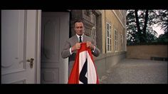 Captain von Trapp tears down and rips up the Nazi flag.