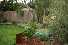 Portfolio: Garden Design Lewisham - All For Garden Australian Garden Design, Australian Native Garden, Concrete Retaining Walls, Garden Retaining Wall, Hydroponic Gardening, Organic Gardening, Garden Beds, Home And Garden, Street Trees