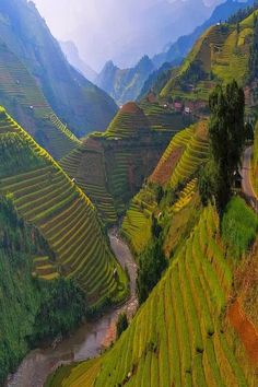 Rice Terrace, Mù Cang Chải District, Vietnam