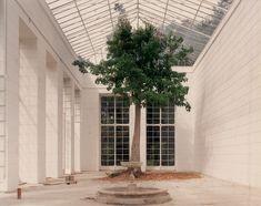 Luigi Ghirri, Caserta 1987   White verandah with a tree centerpiece