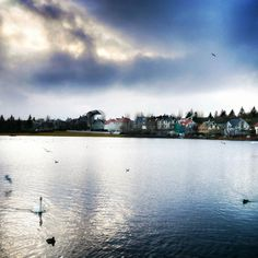 A Sunday reminder of how beautiful short days can be.  #iceland #Reykjavik #mystopover #travelgram #travel #explore