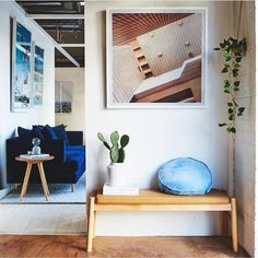 Keep it simple - style your entrance wall with some natural timber accent, an artwork and indoor plants. Indoor Plant Wall, Indoor Plants, Globe West, Entrance Ways, Oak Color, Keep It Simple, Online Furniture, Simple Style, Interior Inspiration