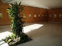Exposición Museo del Pescador en Tenerife · 2007