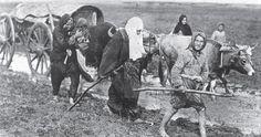 Ahıskalı 600 aile Kars'a getiriliyor