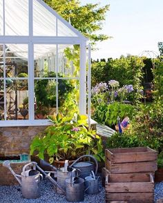 Greenhouse plants, greenhouse shed, back gardens, little gardens, greenhous Greenhouse Shed, Greenhouse Gardening, Indoor Greenhouse, Shed Design, Garden Design, Back Gardens, Outdoor Gardens, Garden Cottage, Home And Garden