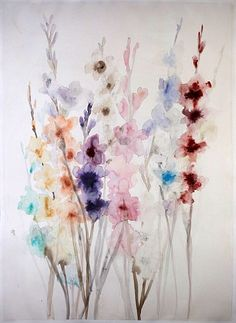 Lourdes Sanchez, gladiolas multicolored 2014, watercolor