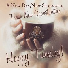 A Fresh New Happy Tuesday good morning tuesday tuesday quotes good morning quotes happy tuesday tuesday quote happy tuesday quotes good morning tuesday coffee tuesday quotes Tuesday Quotes Good Morning, Happy Tuesday Quotes, Tuesday Humor, Good Morning Happy, Good Morning Greetings, Good Morning Wishes, Morning Sayings, Morning Messages, Sunday Quotes