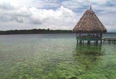 Eco Travel Green Carbon Offset Sustainable Tourism Eco Resort   Yogi Times