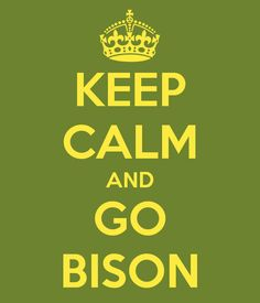KEEP CALM AND GO BISON. Another original poster design created with the Keep Calm-o-matic. Buy this design or create your own original Keep Calm design now. Ironic Quotes, Quotable Quotes, Ndsu Bison Football, Sense Of Life, Story Quotes, Speak The Truth, Hug You, Public Relations, That Way